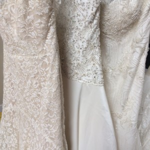 Sampling of dresses from The Wedding Dress Shoppe
